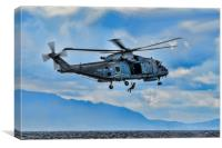 Royal Navy Helicopter, Canvas Print