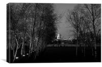 St Paul's with silver birches, Canvas Print