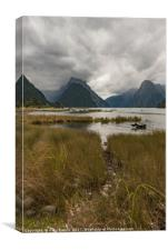 Low cloud in Milford Sound, Canvas Print