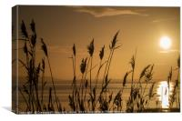 Rushes at Dawn, Laugharne Estuary, Canvas Print