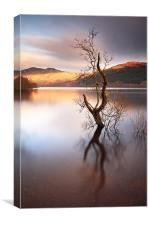 Loch Lomond, Canvas Print
