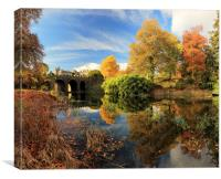 Drummond Garden Reflections, Canvas Print