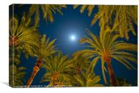Palm trees and Moon, Canvas Print