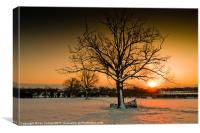 Winter Sunset, Canvas Print