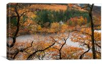 Elan Valley Autumn Colours, Canvas Print
