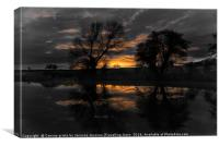 Black and white with a splash of colour , Canvas Print