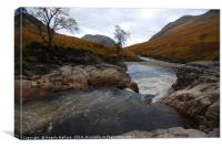 The river at Glen  Etive, Canvas Print