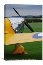 Single wing yellow plane, Canvas Print