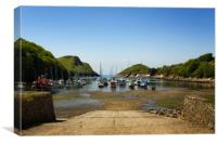Watermouth Cove North Devon, Canvas Print