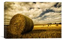Harvest Time in Lincolnshire, Canvas Print