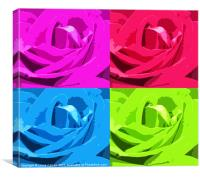 Colour of the Rose, Canvas Print