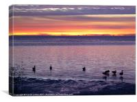 Geese at Sunset, Canvas Print