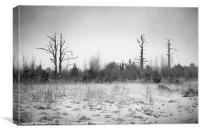 Digital Art Trees and Snow in Black and White, Canvas Print