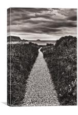 The Path of Life, Canvas Print