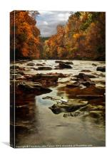 Autumn on the River Avon, Canvas Print