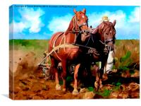 Plough Horses with Blue Sky, Canvas Print