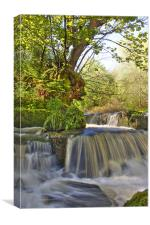 Water fall in Scotland, Canvas Print