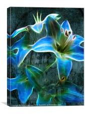 Lily Blue, Canvas Print