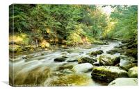 Calm after Thornton Force, Canvas Print
