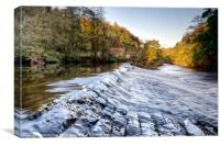 Nidd Gorge Autumn Weir, Canvas Print