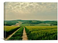 South Downs Way West Sussex, Canvas Print