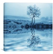 Cold Reflection, Canvas Print