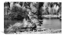 TARN HOWES, Canvas Print