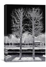 TREES IN BATTERSEA PARK, Canvas Print