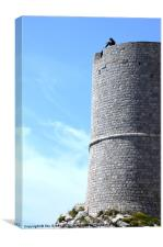 The Thinking Tower, Canvas Print