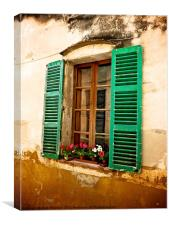 Classic Spanish Window with Flowers, Canvas Print