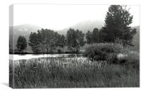 Pond in Montana, Canvas Print