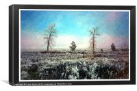 Bitterroot Mountain frosty day, Canvas Print