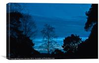Blue sky in forest night, Canvas Print