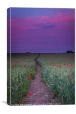 Purple sky and field of Poppies near Dorchester, Canvas Print