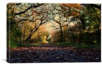 Killarney National Park, Canvas Print