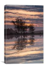 Reflections on a pond, Canvas Print