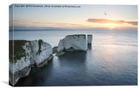 Old Harry Dawn, Canvas Print