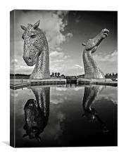 Kelpie Reflection, Canvas Print