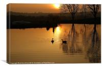 Sunset and Geese, Canvas Print