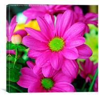 For My Mum, Canvas Print