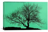 Tree In The Sky Silhouette, Canvas Print