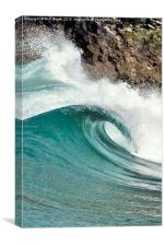 'Towan Curl', Canvas Print