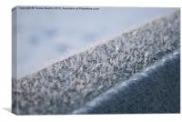 Ice crystals on fence, Canvas Print
