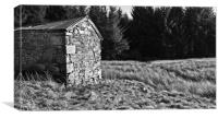 Old Barn In The Woods, Canvas Print