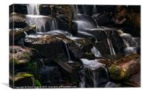 Virginia Water Cascade, Canvas Print