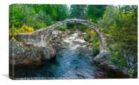 Carrbridge 18th Century Bridge, Canvas Print