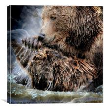 How much can you bear?, Canvas Print