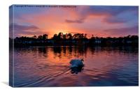 Roath Park, Canvas Print