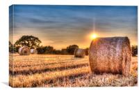 A Summers Evening Farm, Canvas Print