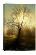 FIRE TREE, Canvas Print
